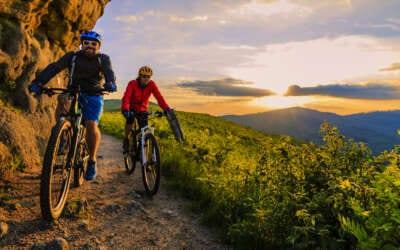 Best Mountain Bikes in 2020