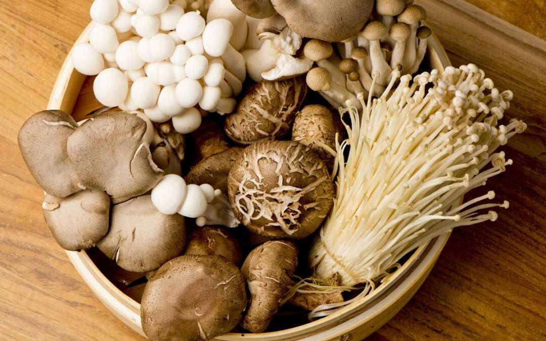 Mushrooms boosting your immune system