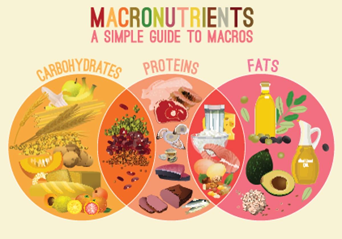 Macronutrients for Diets plans