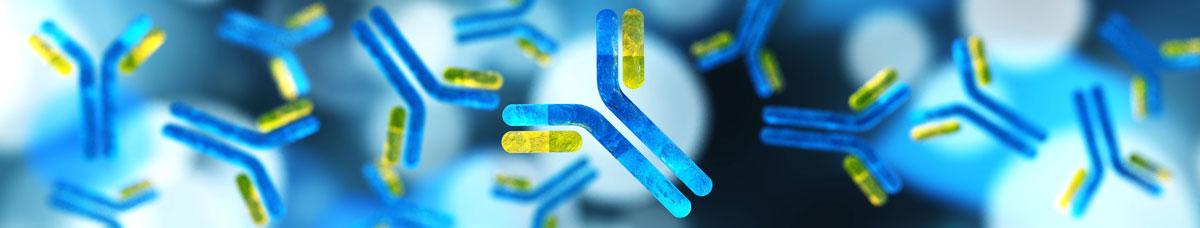 Bacteria virus cells